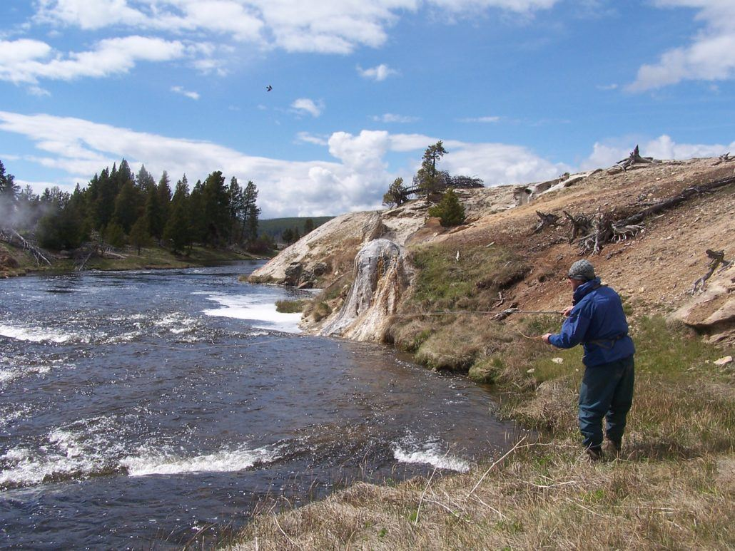 Yellowstone national park opens jackson hole wyoming fly for Yellowstone fly fishing
