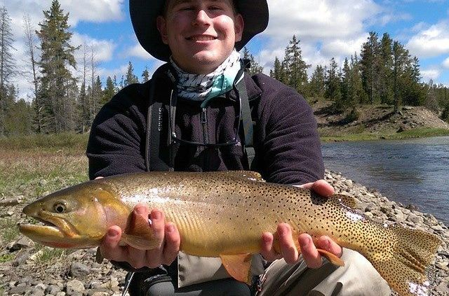Blog Amp Fly Fishing Report Jackson Hole Amp Yellowstone Fly Fishing Guide