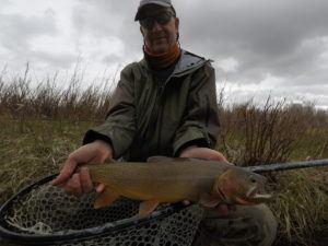 Jackson Hole fishing report